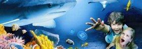 Semana de la ciencia divertida: Talleres infantiles en Benalmádena
