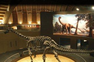 """""""Meteoritos, la extinción de los dinosaurios"""": Exposición para niños en Asturias"""