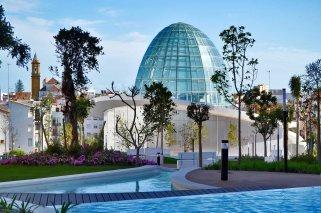 Orquidario de Estepona: Un paseo lleno de color